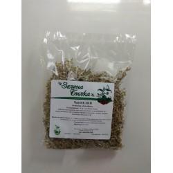 ПЕЛИН - Artemisia absinthium